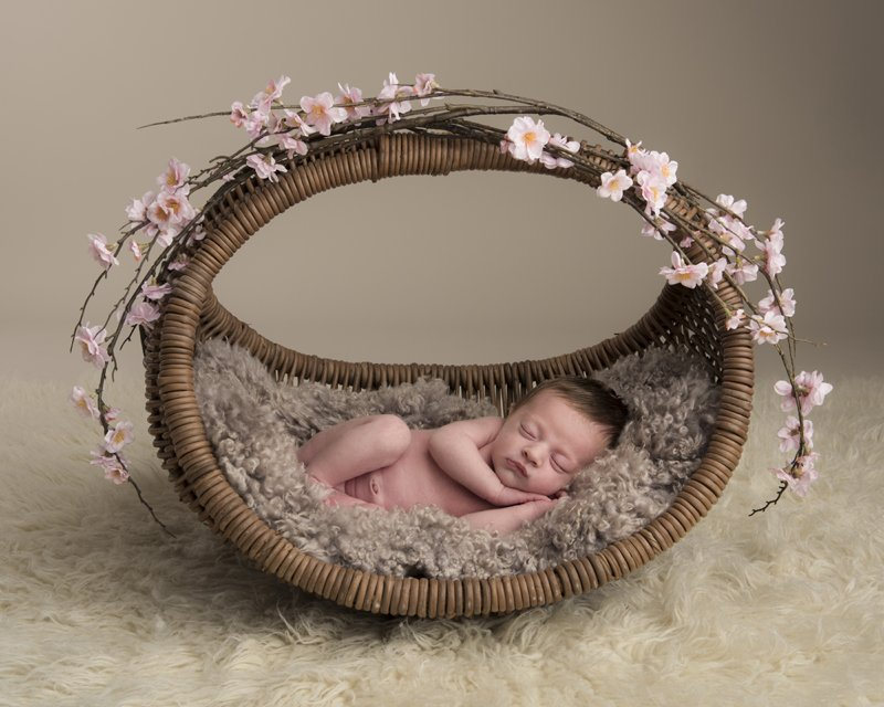 Image for Newborn Session & 10